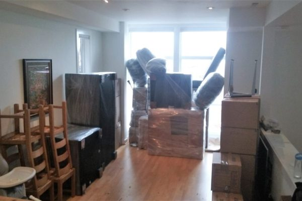 new moving pics